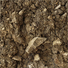 Soil from the Les Hautes Blanches Vignes Vineyard